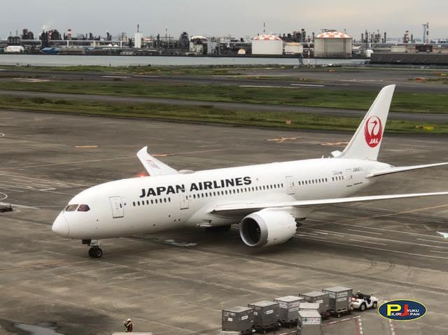 羽田空港日記 2020年10月17日(土)