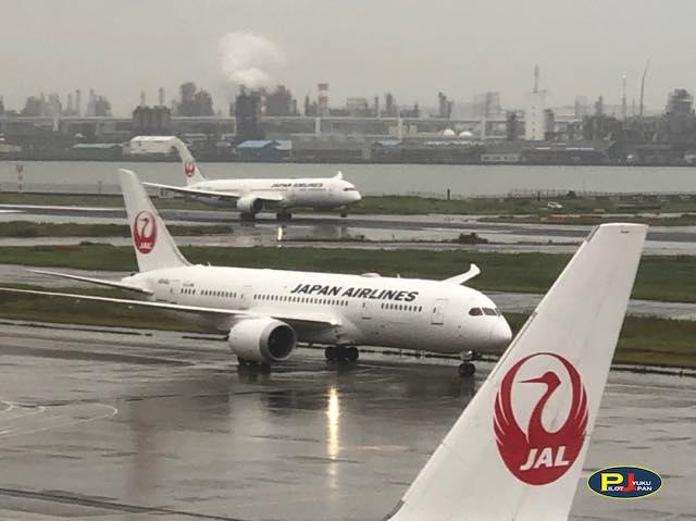 羽田空港日記 2020年10月16日(金)